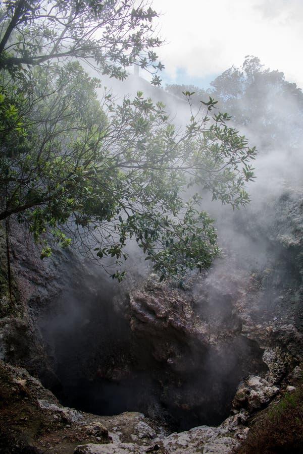 Geyser in valle di Furnas, isola di Miguel del sao, Azzorre, Portogallo immagine stock