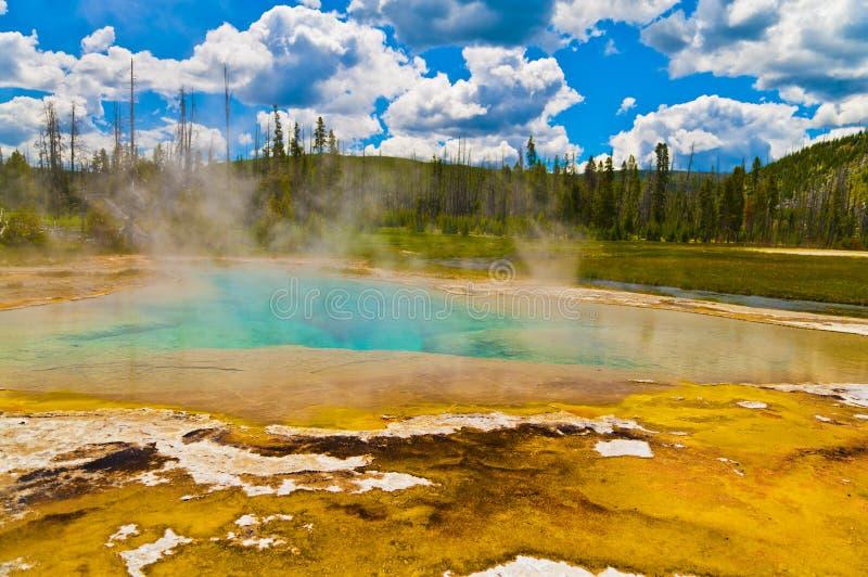 geyser yellowstone royaltyfria foton