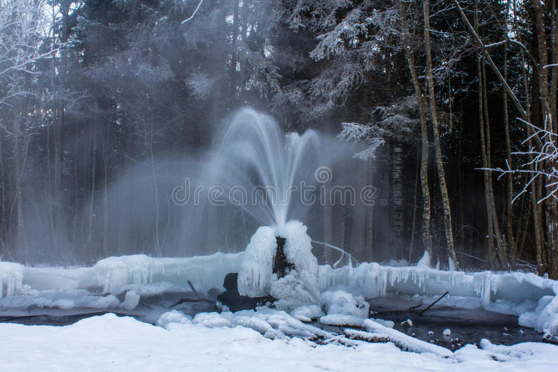Geysers de Gatchina photo stock