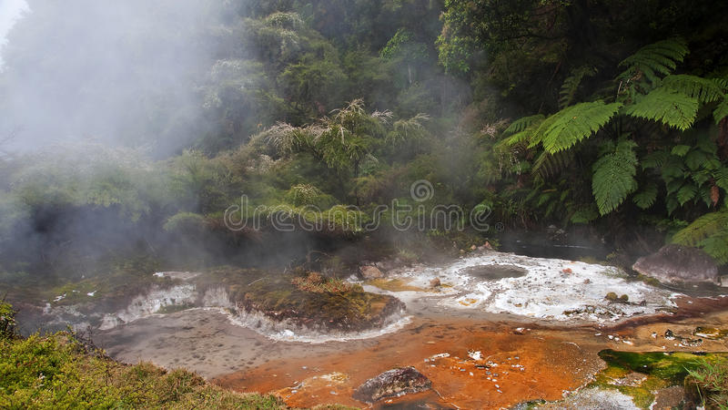 Geysers and hot springs are located in many places stock photo