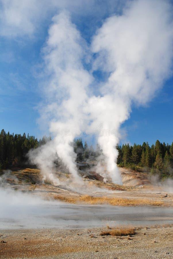 Parque nacional de Yellowstone, EUA foto de stock royalty free