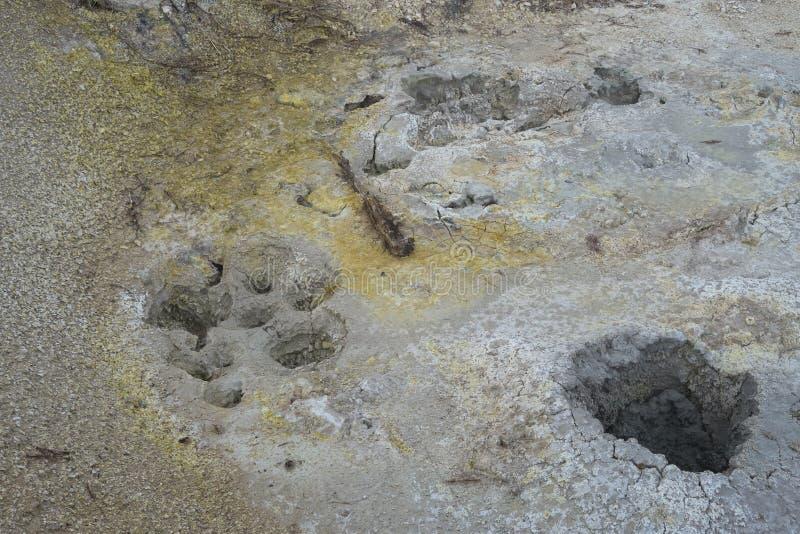 Geysers secs de la chaleur de fumerolle au parc national de Yellowstone image libre de droits