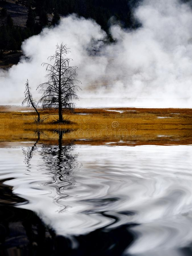 Geysers and Steam Rising in Yellowstone National Park Reflection Reflecting in Water Pond or Lake. Geysers and steam from hot springs rising in Yellowstone royalty free stock image
