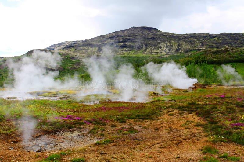 Geysir-Bereich, Island lizenzfreie stockfotografie