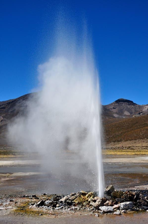 Download Geysir of puchuldiza stock image. Image of america, plain - 25977137