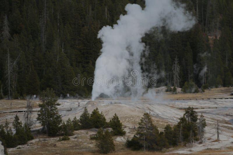 Geyzers Yellowstone park narodowy zdjęcia royalty free