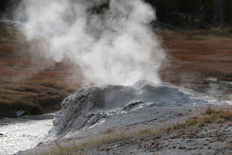 Geyzers Yellowstone park narodowy obraz royalty free