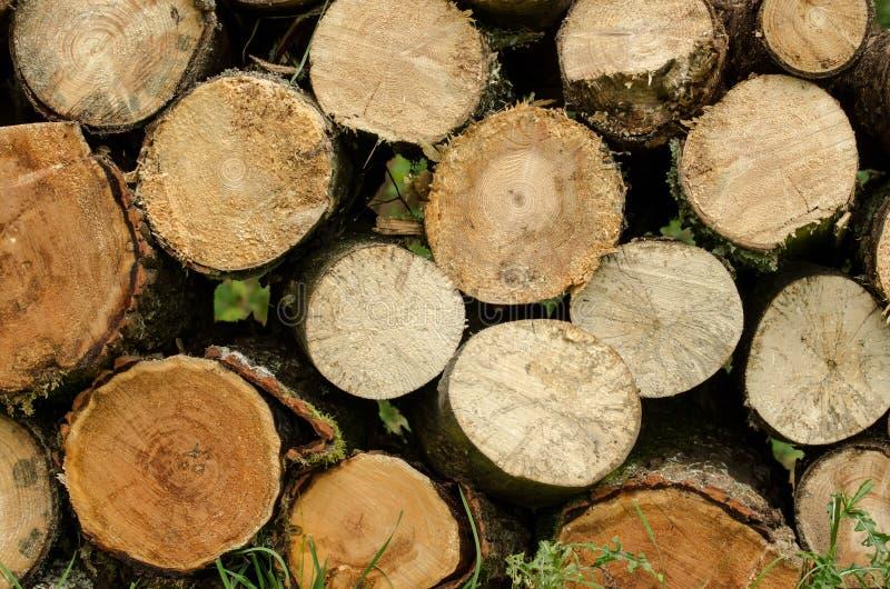 Gezaagd opgestapeld hout royalty-vrije stock afbeeldingen