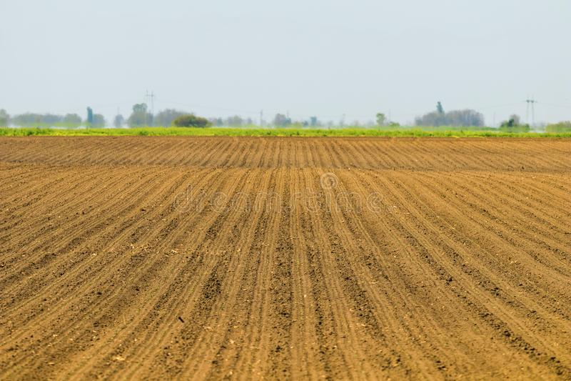 Gezaaid gebied Landbouwgebieden in de lente Zaaiende gewassen royalty-vrije stock foto's