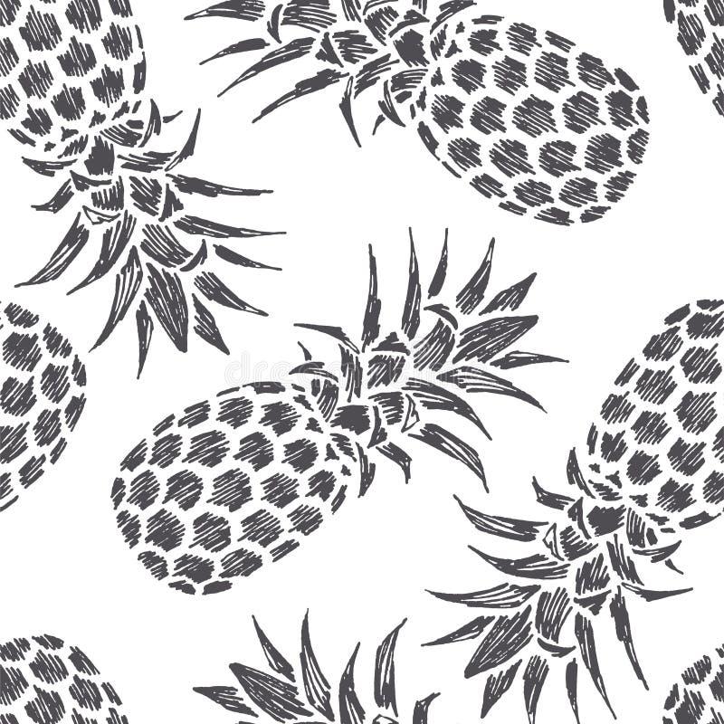 Gezeichnete Illustration der Weinlese Hand von Ananas Frische Sommerfrucht lizenzfreies stockfoto