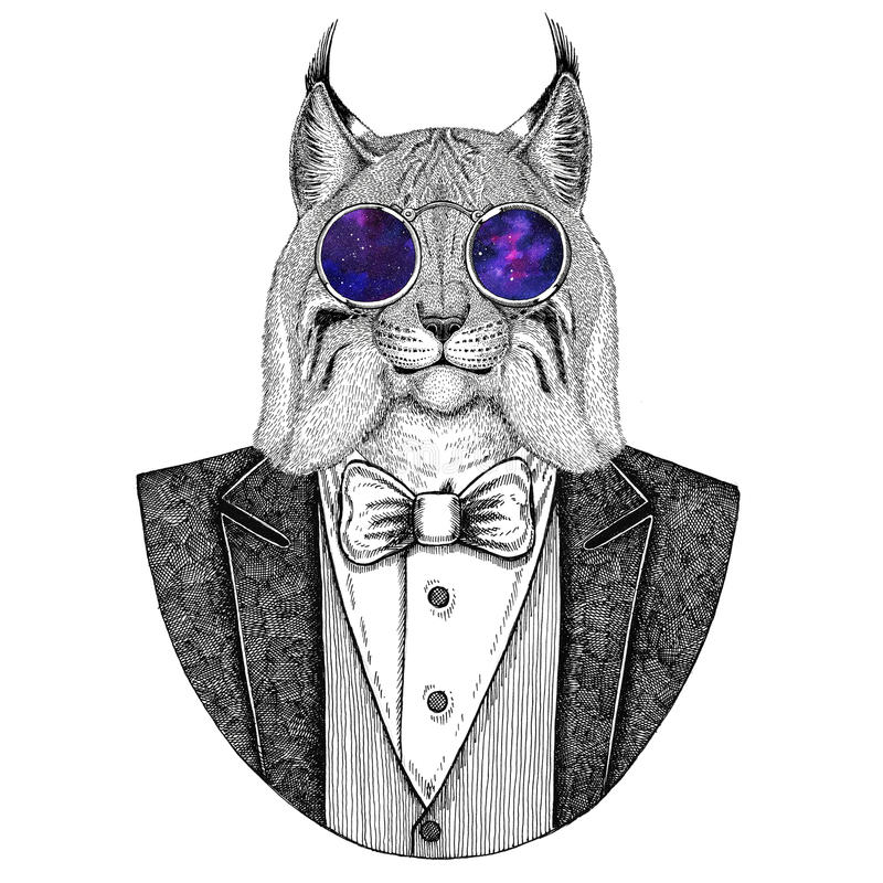 Gezeichnete Illustration Wildkatze-Luchs-Bobcat Trot Hipsters Tierhand für Tätowierung, Emblem, Ausweis, Logo, Flecken, T-Shirt stock abbildung