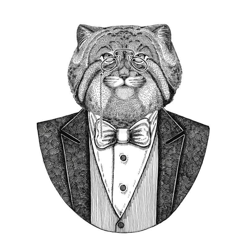Gezeichnete Illustration Wildkatze Manul-Hippies Tierhand für Tätowierung, Emblem, Ausweis, Logo, Flecken, T-Shirt lizenzfreie abbildung