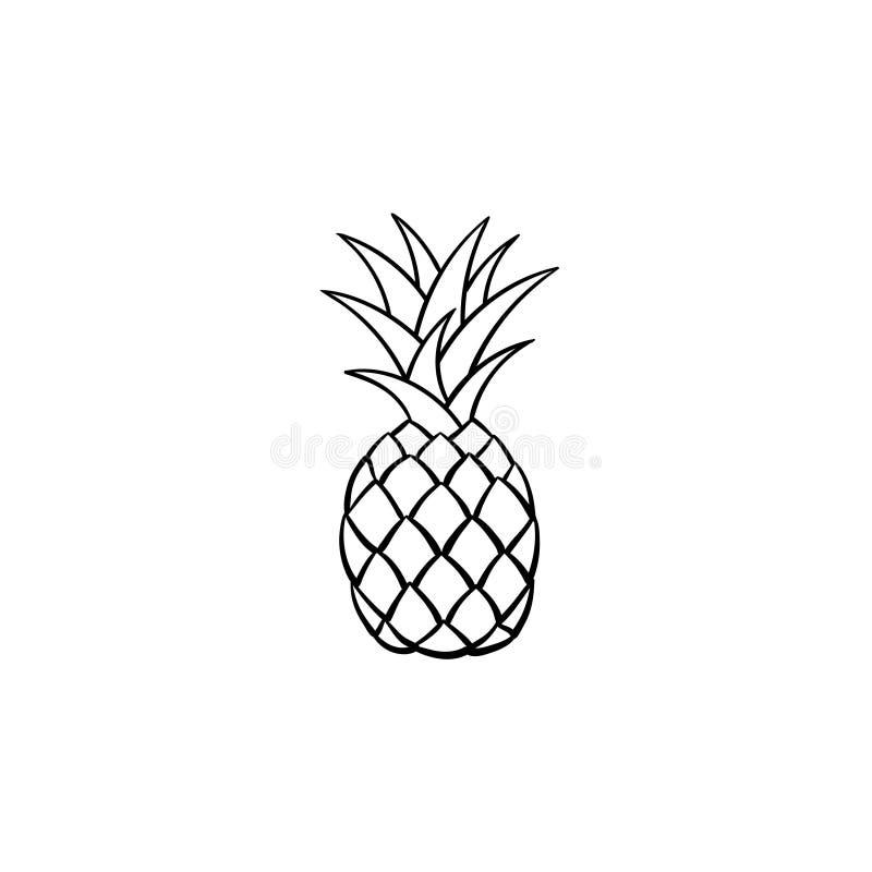 Gezeichnete Skizzenikone der Ananas Hand lizenzfreie abbildung