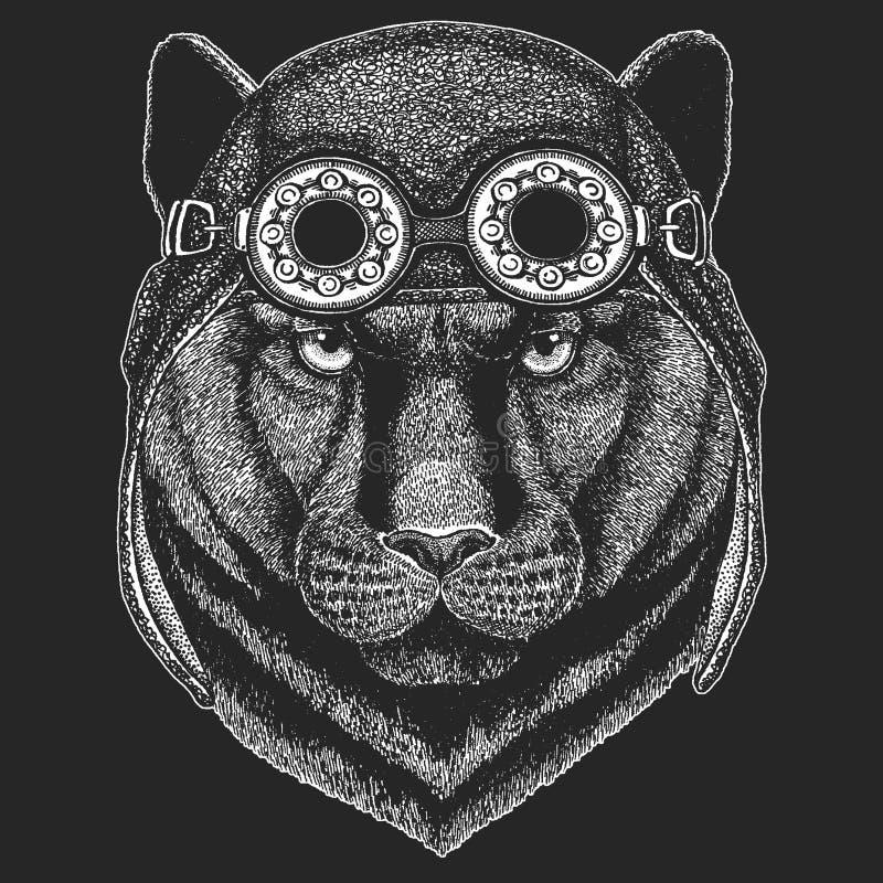 Gezeichnetes Bild der Panther-Puma-Puma-Wildkatze Hand für Tätowierung, Emblem, Ausweis, Logo, Flecken, T-Shirt kühles Tiertragen lizenzfreie abbildung