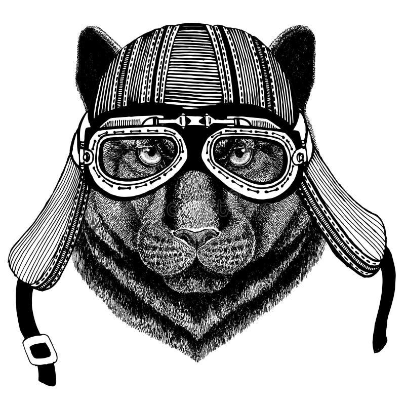 Gezeichnetes Bild des Panther-Puma-Pumas wildes catHand des tragenden Motorradtiersturzhelms für T-Shirt, Tätowierung, Emblem, Au vektor abbildung