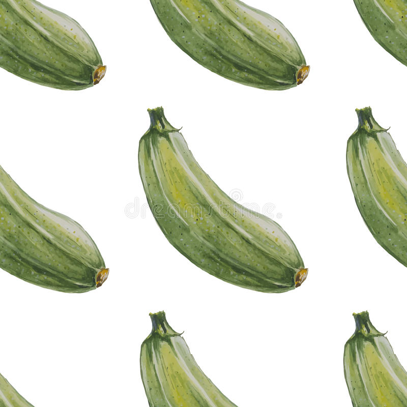 gezeichnetes nahtloses muster des aquarells hand mit zucchini vektor abbildung illustration. Black Bedroom Furniture Sets. Home Design Ideas