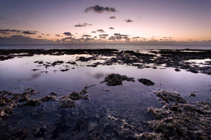 Gezeiten-Pools am Sonnenaufgang lizenzfreies stockbild