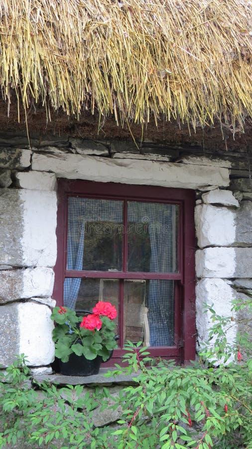 Gezellig ouderwets oud Landbouwbedrijfhuis met bloemdoos royalty-vrije stock foto