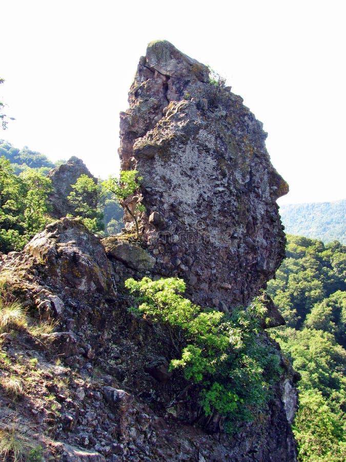 Gezicht gevormde rots op een heuvel in Hongarije stock fotografie