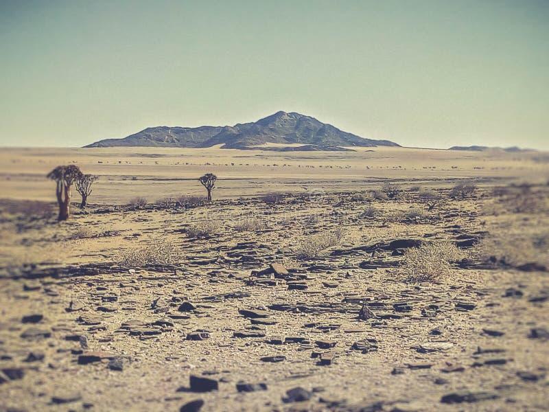 Gezicht op het droge land in Namibië stock foto's