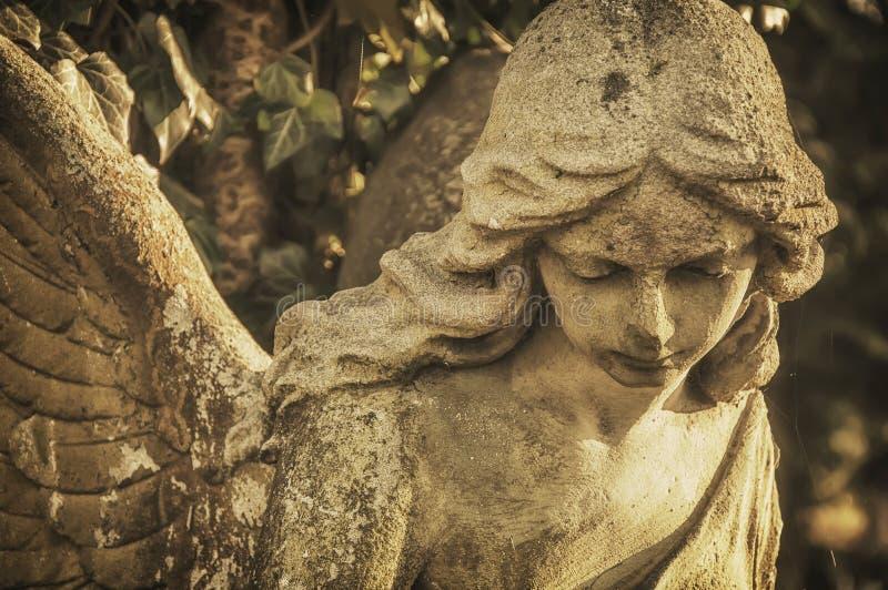 Gezicht van een steen antieke engel royalty-vrije stock foto's