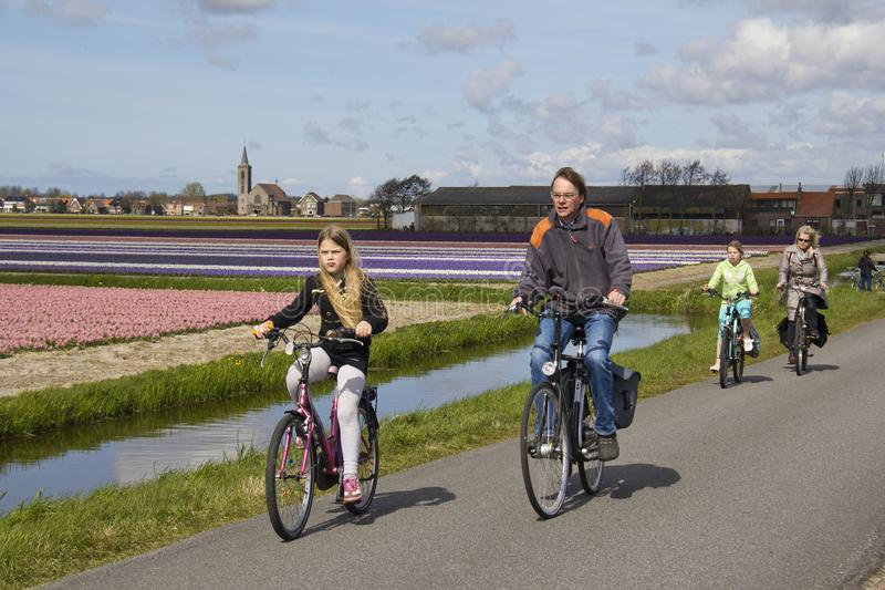Cycling through flower fields in Holland. Hillegom, Holland - April 14, 2012: Family with two kids cycling through flower fields in rural Holland royalty free stock photos
