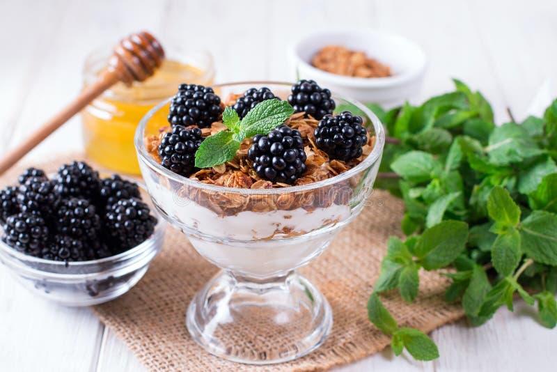Gezond gelaagd dessert met yoghurt, granola, braambes in glas op houten achtergrond royalty-vrije stock fotografie