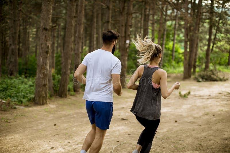 Gezond geschikt en sportief paar dat in aard loopt stock fotografie
