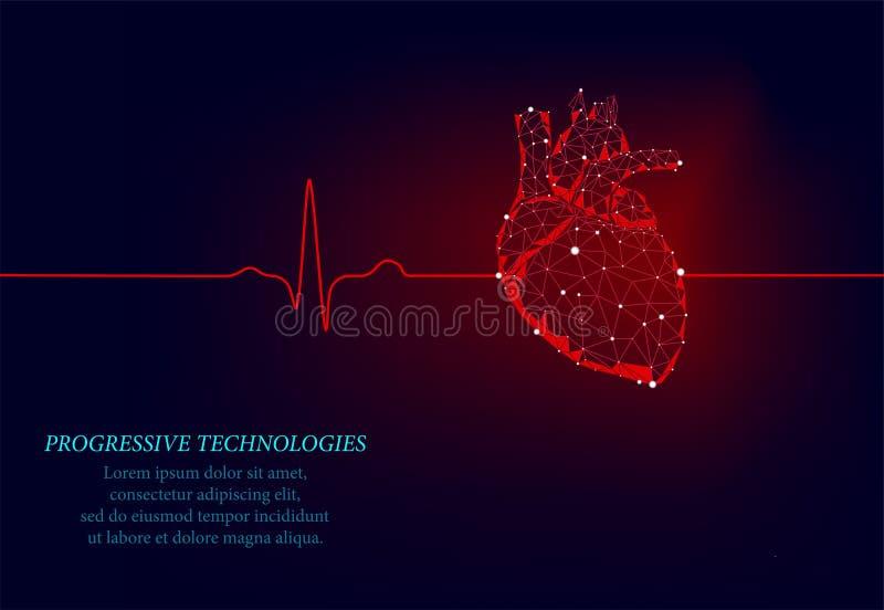 Gezond menselijk hart 3d geneeskunde model lage poly Progressieve techologies De driehoek wordt verbonden door verlichtingspunten royalty-vrije stock afbeelding