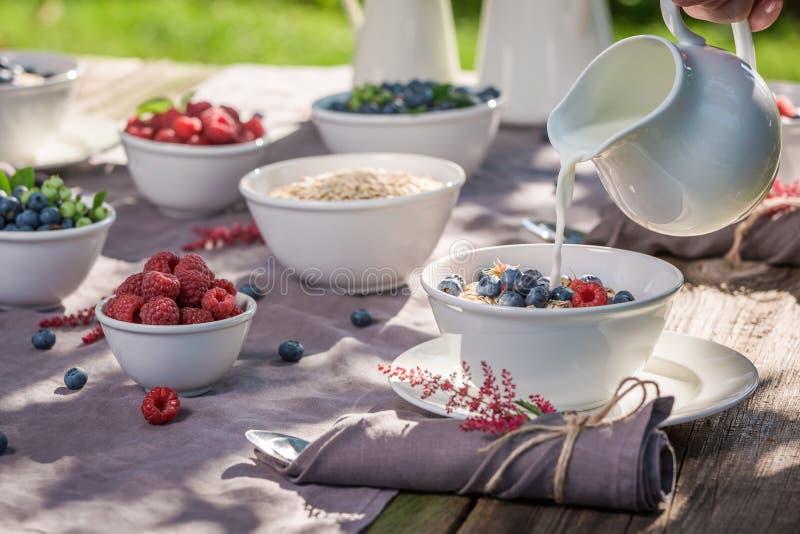 Gezond ontbijt met frambozen en bosbessen in zonnige dag stock foto