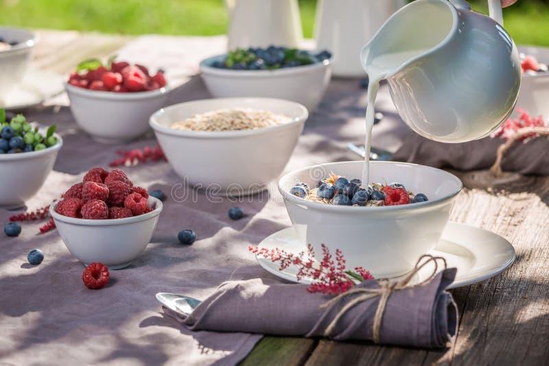 Gezond ontbijt met havervlokken en bessen in zonnige dag royalty-vrije stock foto's