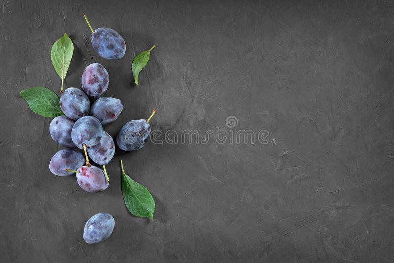 Gezond voedsel De de verse rijpe pruim en bladeren van de close-upmening met exemplaarruimte stock afbeelding