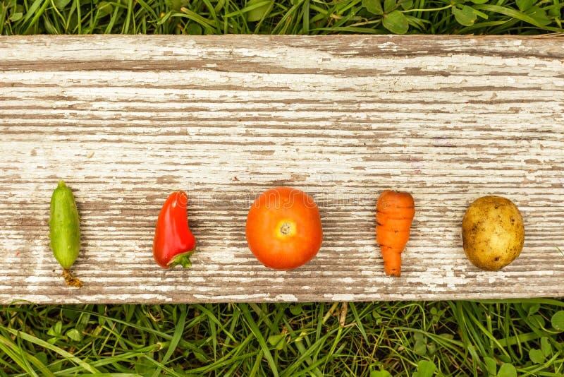 Gezond Voedsel het ruwe voedsel van de de herfstoogst voor vegetariërs royalty-vrije stock afbeeldingen
