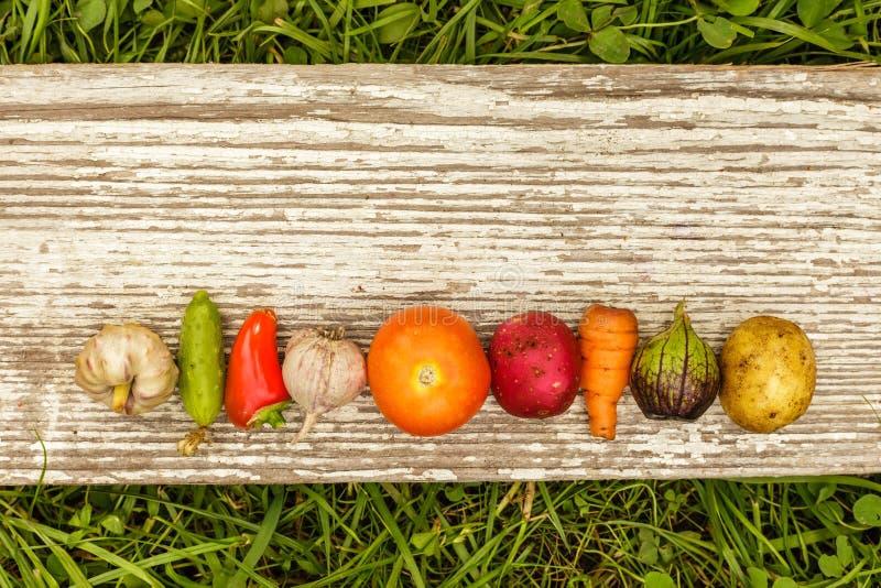 Gezond Voedsel het ruwe voedsel van de de herfstoogst voor vegetariërs royalty-vrije stock fotografie