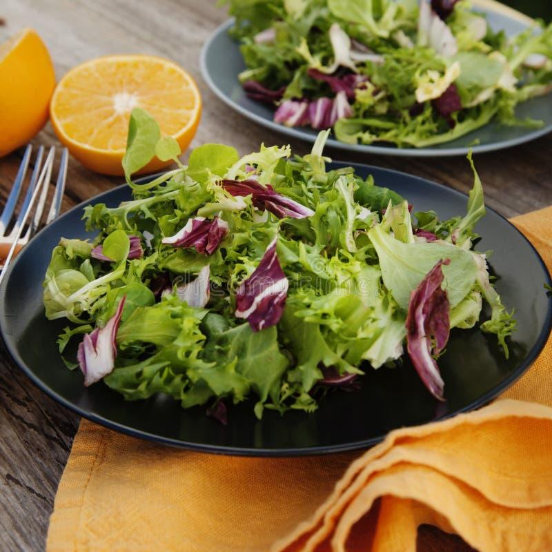 Gezond voedsel Verse groene salade met spinazie, arugula, snijsla en sla royalty-vrije stock foto