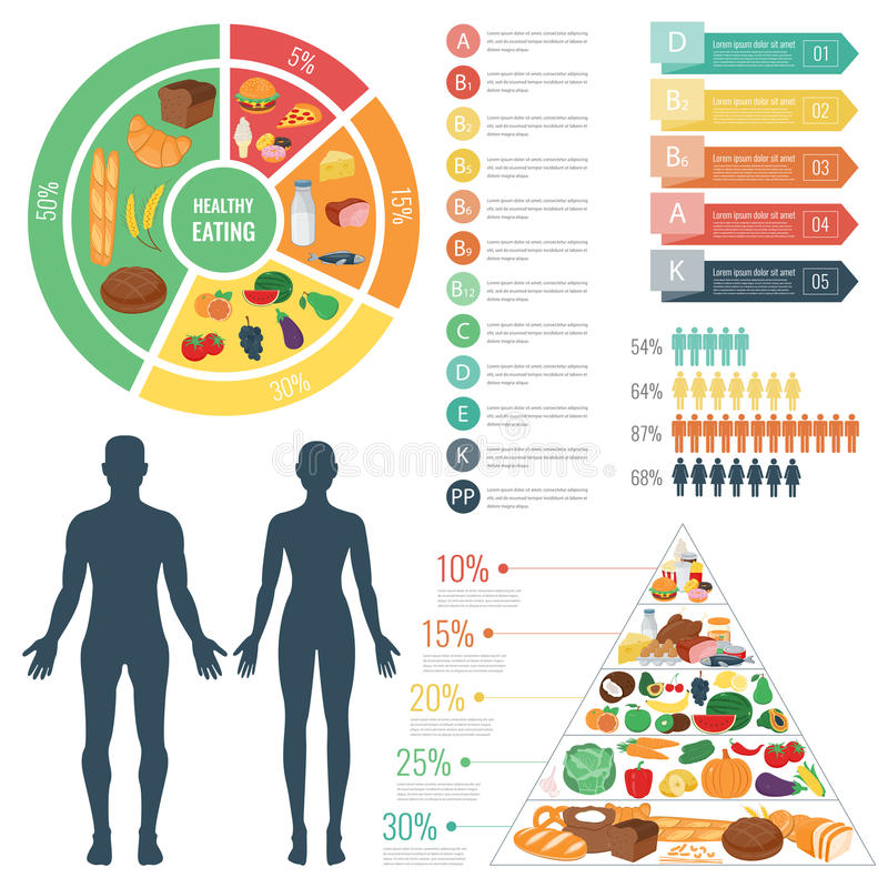 Gezond voedsel voor menselijk lichaam Het gezonde Eten Infographic Voedsel en drank Vector vector illustratie
