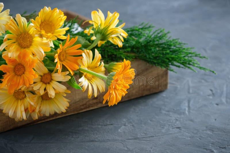 Gezonde calendula of goudsbloembloemen Geneeskrachtige kruiden in houten krat stock fotografie