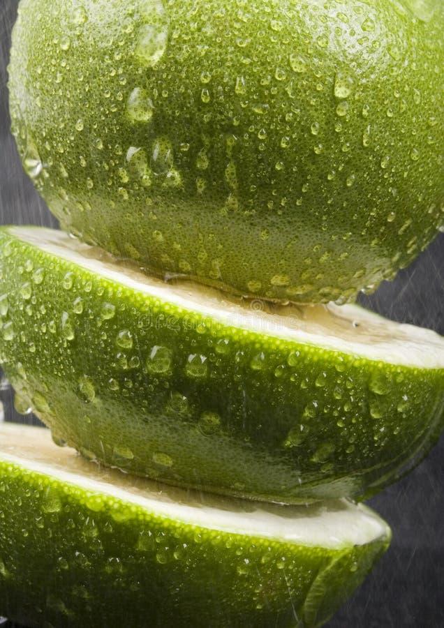 Gezonde citrusvruchten royalty-vrije stock afbeelding
