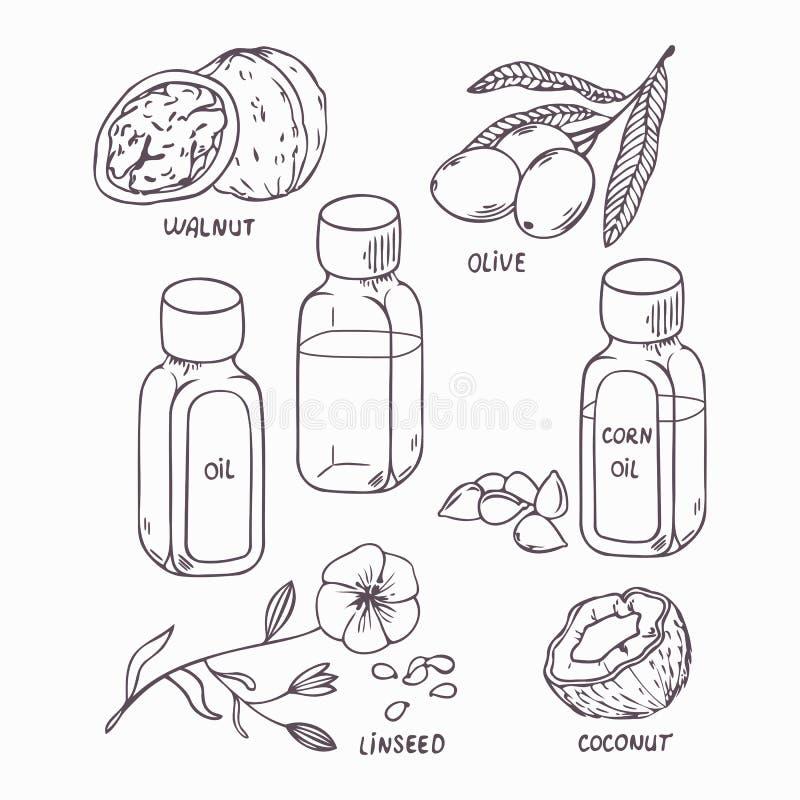Gezonde die olie in overzichtsstijl wordt geplaatst Kokosnoot, okkernoot, olijf, graan en lijnzaad stock illustratie
