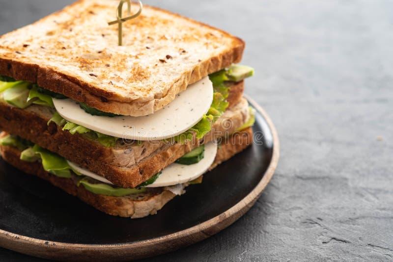Gezonde Eigengemaakte Vegetarische Veggie Sandwich met Sla komkommer, avocado, Kaas De ruimte van het exemplaar stock afbeeldingen
