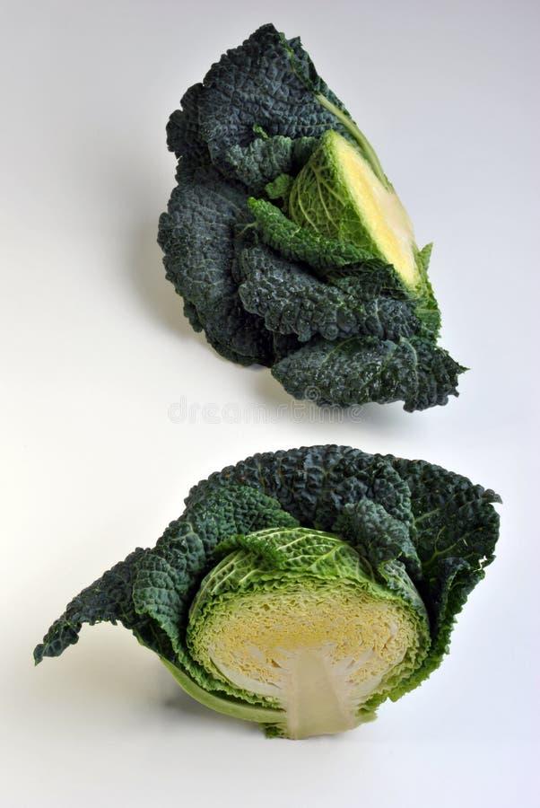 gezonde en verse organische savooiekool royalty-vrije stock foto