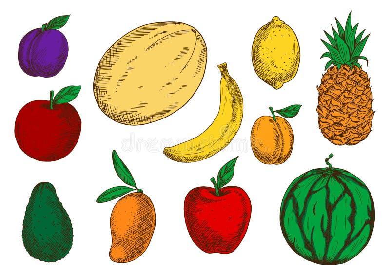 Gezonde en verse vruchten gekleurde schetspictogrammen royalty-vrije illustratie