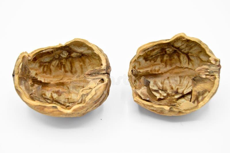 Gezonde en voedzame beige bruine okkernootkorrels Verpletterde okkernootshells royalty-vrije stock afbeeldingen