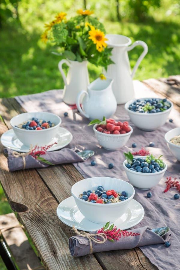 Gezonde granola met bessen en melk in de zomer royalty-vrije stock afbeeldingen