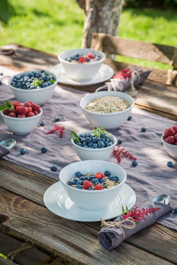 Gezonde granola met bessen en melk in zonnige dag royalty-vrije stock afbeelding