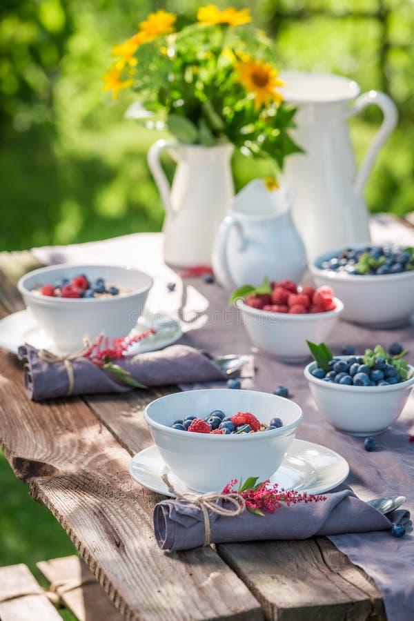 Gezonde granola met frambozen en bosbessen in zonnige tuin royalty-vrije stock fotografie