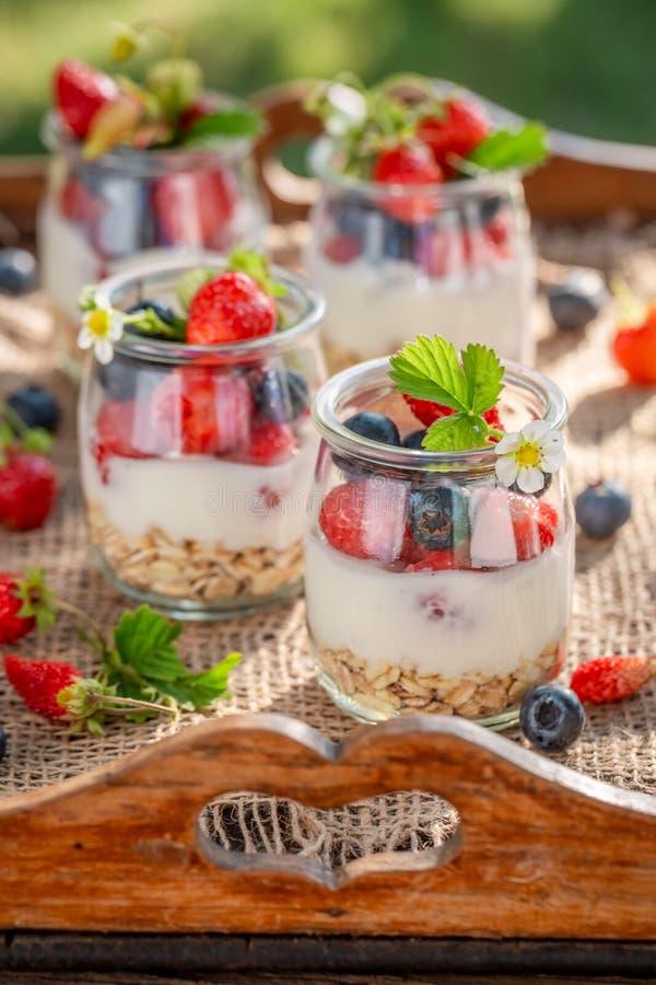 Gezonde havervlokken in kruik met yoghurt en bessen royalty-vrije stock fotografie