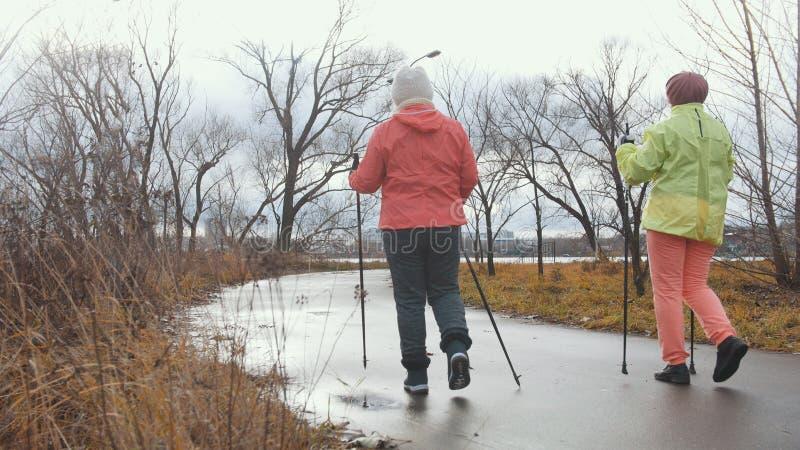 Gezonde levensstijl voor bejaarden - het noordse lopen in de herfstpark, achtermening royalty-vrije stock foto's