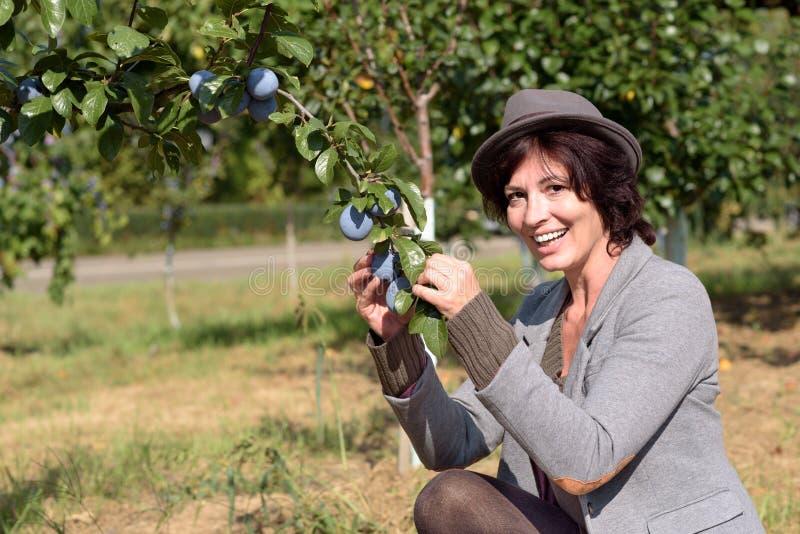 Gezonde modieuze jonge vrouw die met pruimen pronken stock foto's