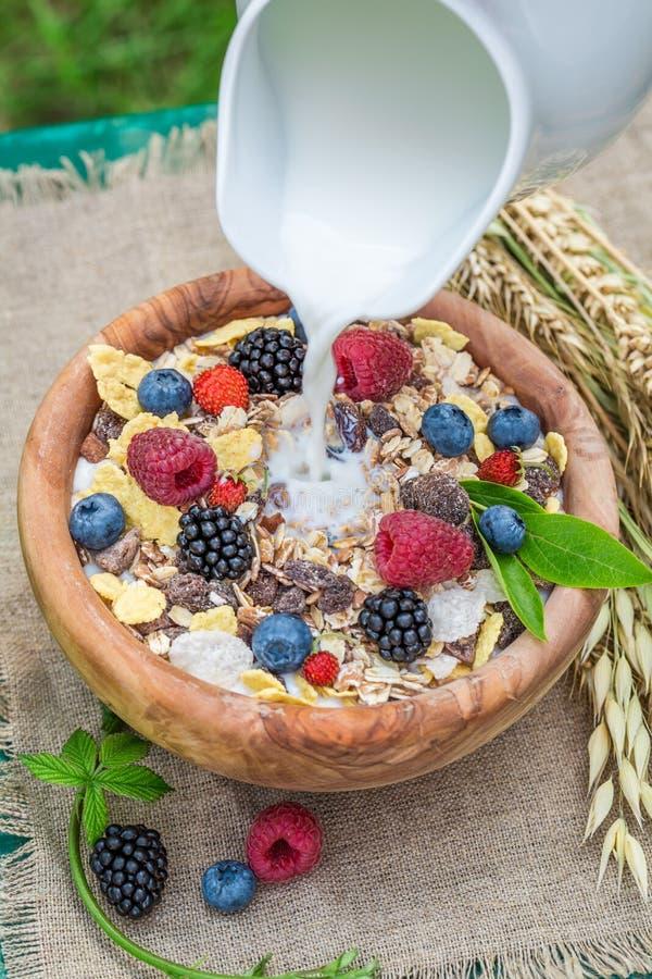 Gezonde muesli met bessen en melk in tuin stock foto